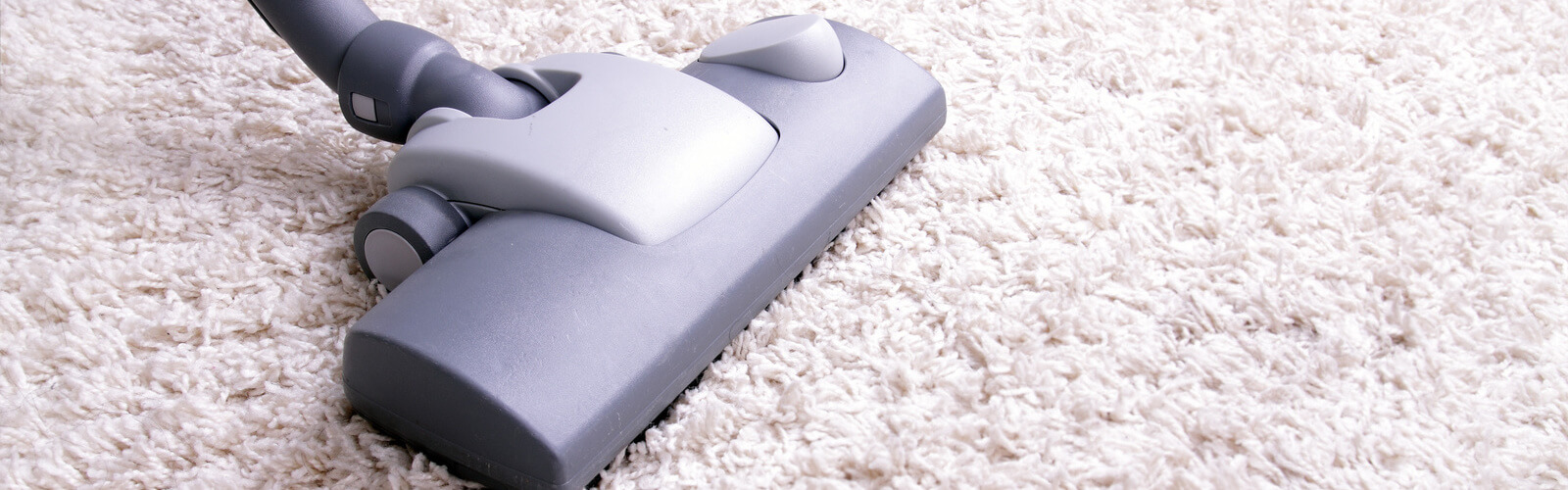 Carpet Cleaning Kansas City Mo Friendly Cleaning Services